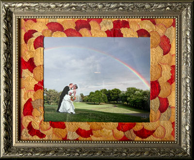 Bride and groom under the rainbow in dried flower matte