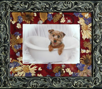 Petal a memory pet memories make a great gift for anyone
