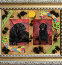 A pet memories mat will help you cherish your furry friend for a lifetime